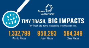 The Cleaner the Coast, the higher the hopes: International Ocean Coastal Cleanup